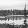 709  G Fall Colors and Lake BW