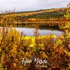 715  G Meiers Lake Fall Colors Plane