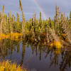 909  G McCarthy Road Views Rainbow V