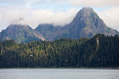 Fox Island, Kenai Fjords National Park
