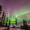 64  G Thursday Aurora Borealis Lodge