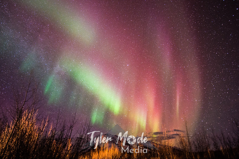 8  G Saturday Night Coldfoot Aurora