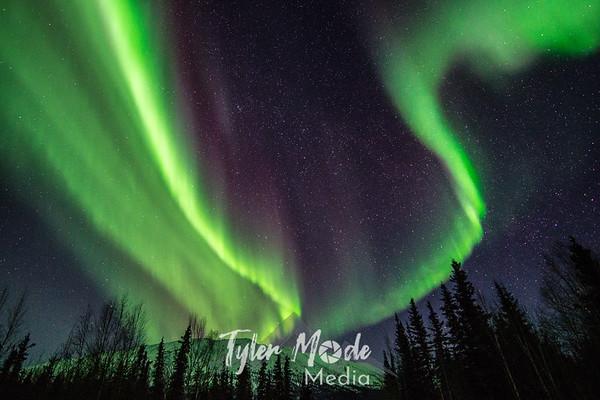 Alaska Aurora 3.6.16