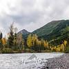 93  G Fall Along East Fork Sixmile Creek