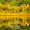 163  G Fall Colors and Summit Lake Close