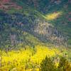 31  G Hillside Sunlight