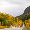 559  G Fall Color Glenn Highway
