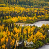 589  G Mantanuska River Fall Color Close
