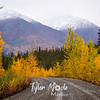899  G Road and Fall Colors