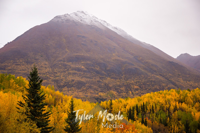 935  G Fall Colors and Mountains