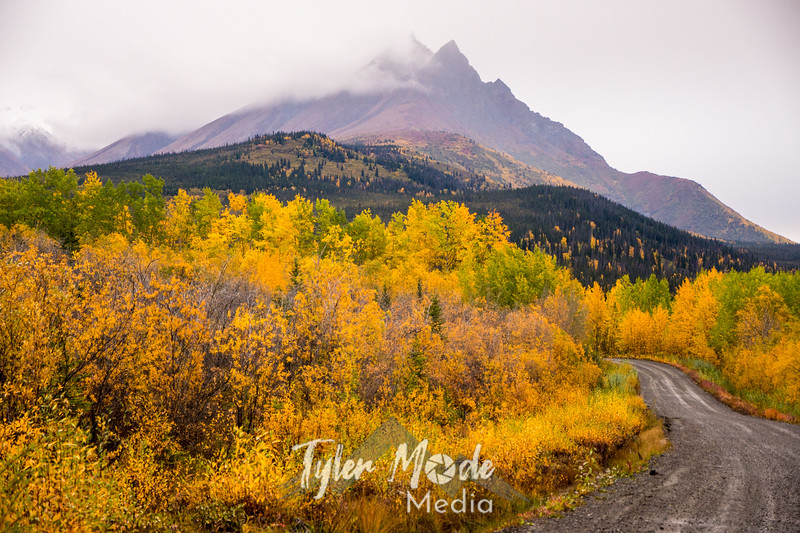 929  G Road and Fall Colors View