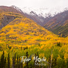 969  G Wrangell St  Elias National Park Fall Colors