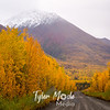 914  G Road and Fall Colors