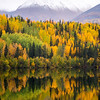 1021  G Wrangell St  Elias National Park Fall Lake V