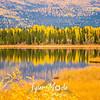 905  G Fall Colors Pond Close