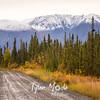 962  G Wrangell St  Elias National Park Fall Colors Road