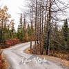 1967  G Wonder Lake Road