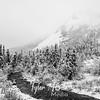 1851  G Denali Snow River BW