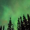 2146  G Denali Aurora V