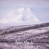 2336  G Snowy Denali Mountains