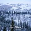 2248  G Snowy Denali