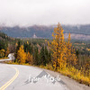 2488  G Denali Road Fall