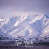 2357  G Snowy Denali Mountains