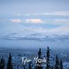 2267  G Snowy Denali View
