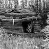 1448  G Abandoned Shed BW
