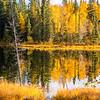 1452  G Fall Pond V