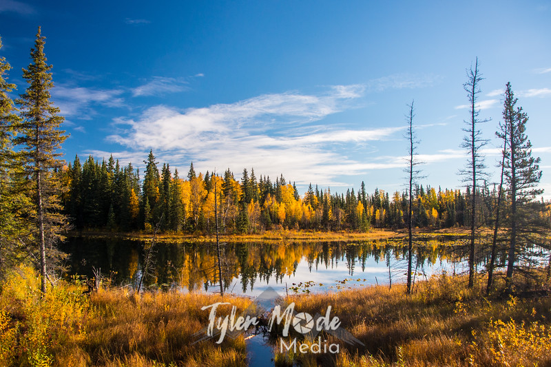 1453  G Fall Pond