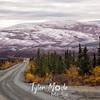 1490  G Denali Highway View