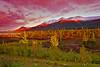 Alaska,Park Highway near Denali, Fall Colors,Sunrise, 阿拉斯加, 迪纳利,  秋色, 日出