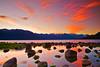 Alaska, Haines, Lutak Inlet, Rock, Landscape, Sunrise,  阿拉斯加, 海恩斯, 日出
