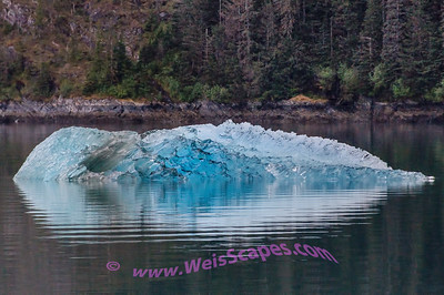 Early morning Ice reflections on the way to Dawe's Glacier.