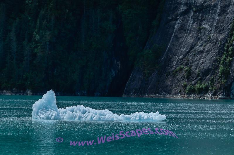 Ice from Dawe's Glacier.