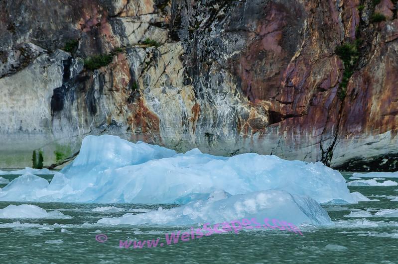 Glacier Ice in the Endicott Arm area.