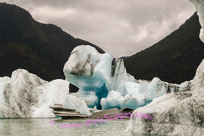 Glacier Ice as we weave our way thru the ice field in front of Baird Glacier, Thomas Bay Alaska.