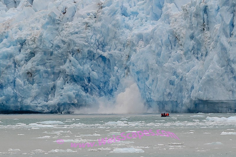 Calving ice by skiff at Dawe's Glacier.