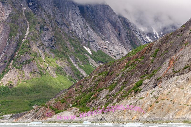 Vegetation get's a foothold after retreating glacier.