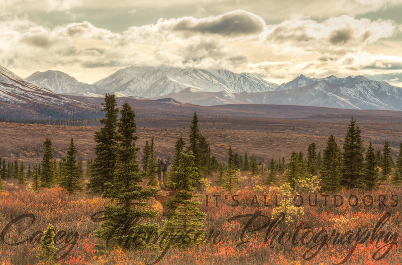 Denali tries to stick her head out from behind the clouds but can't quite shake them. September 14, 2012