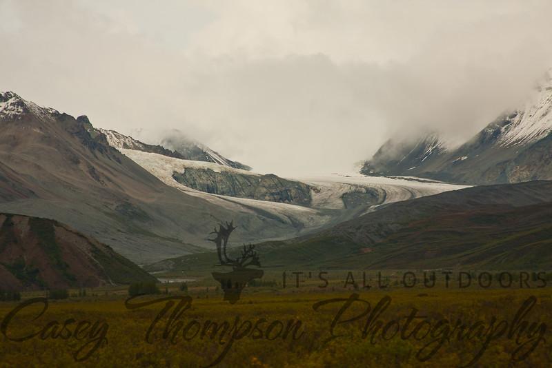 Castner Glacier. July 2011