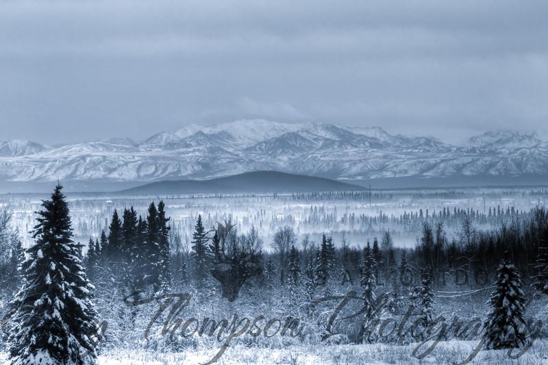 """Winter Fog"" - Alaska Range from Mushers Hall in Fairbanks, AK. 1-13-13"