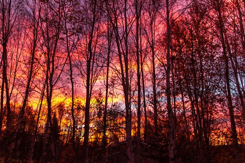 Morning Light - Fairbanks, AK - September 22, 2012