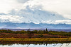 Denali from Reflection Pond - September 13, 2013