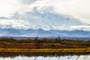 Denali from Reflection Pond - September 13, 2013
