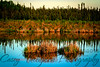 Peat Pond - Goldstream Road - Fairbanks, AK