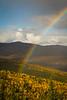 Stiles Creek/Colorado Creek Trail Rainbow.