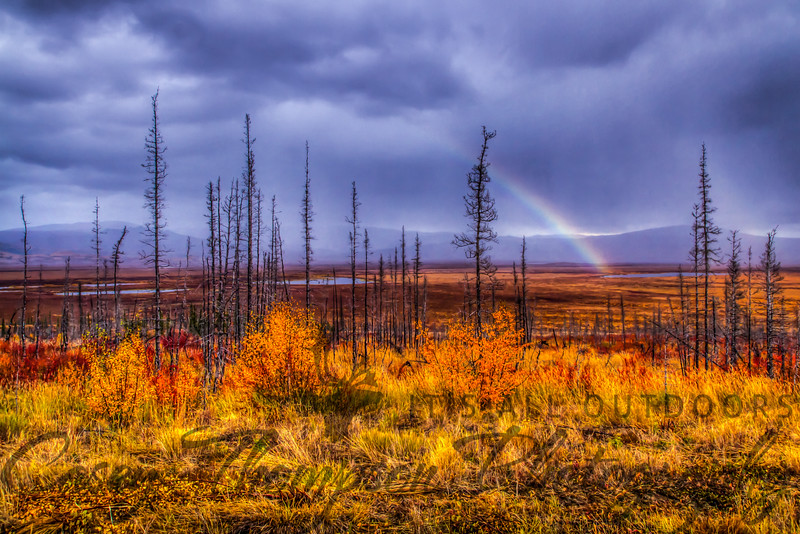 """Yukon Flats Rainbow"" - Dalton Highway - Alaska - September 5, 2012"