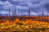 """Yukon Flats Rainbow"" - Dalton Highway - Alaska - September 5, 2012"